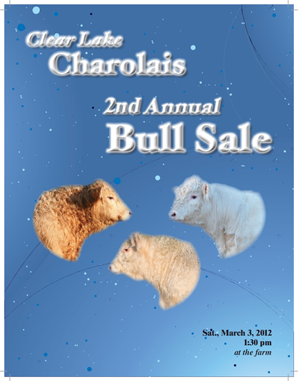 Clear Lake Charolais